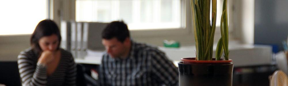 2 Collaborateurs concentrés sur leurs projets
